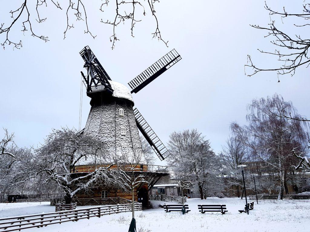 Britzer Mühle im Winter